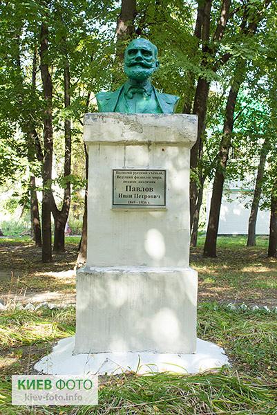Памятник Павлову Ивану (в больнице Павлова)