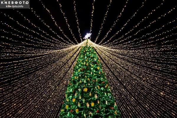 Главная елка страны на Софийской площади 2021